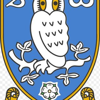 Sheffield Wednesday v Leeds united