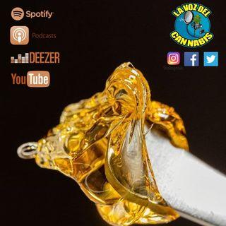 Capítulo 22: Tertulia - Fotografía del Cannabis, Extracciones y Experiencias Fumetas