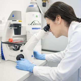 Il coronavirus sfuggito da un laboratorio, la bufala più creduta