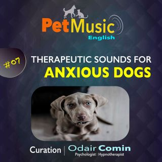 #07 Therapeutic Sounds for Anxious Dogs | PetMusic