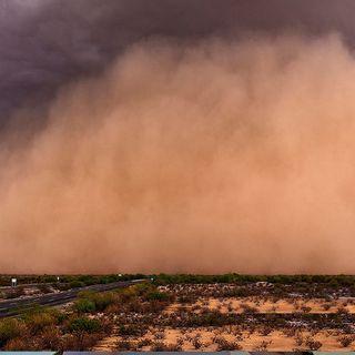 Polvo del Sahara puede incrementar mortalidad