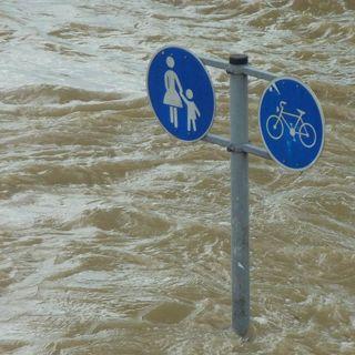 Cambio Climático y normativa cobarde | el charco #27
