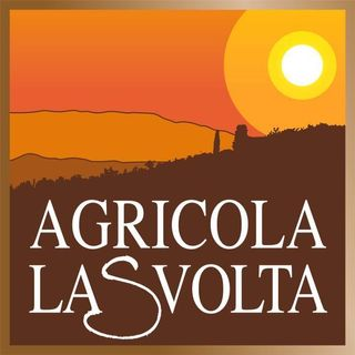 Agricola La Svolta - Niccolò Lari