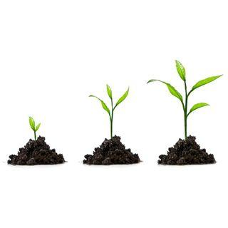 Crescita personale