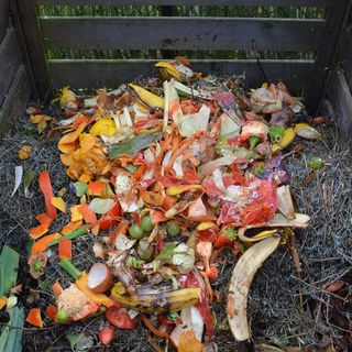 3 Ways to Make Your Garden More Sustainable - DIY Garden Minute Ep. 131