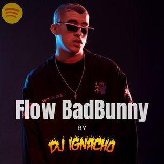 Flow badBunny 🐰