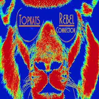 Topkats Rebel Connection's Shows
