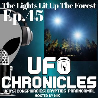 Ep.45 The Lights Lit Up The Forest