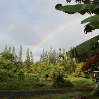 Travelin GDs: Hawaii, The Big Island