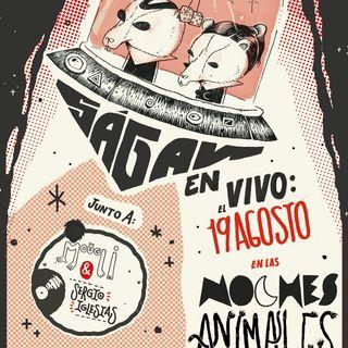#Nochesanimales de Zoocios (Ságan y Moügli)