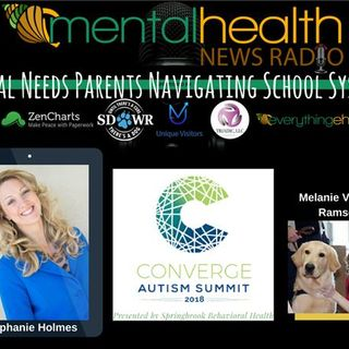Special Needs Parents Navigating School Systems