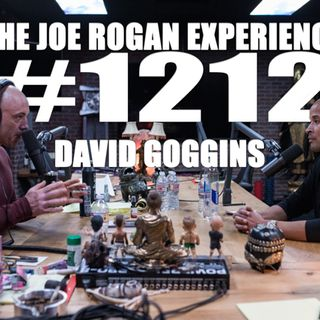 #1212 - David Goggins
