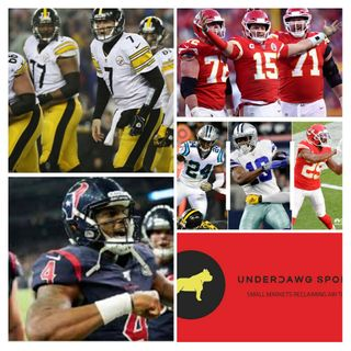 UnderDawg Sportz Chiefs Texans Steelers NFL Free Agency