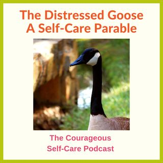 The Distressed Goose - A Self Care Parable
