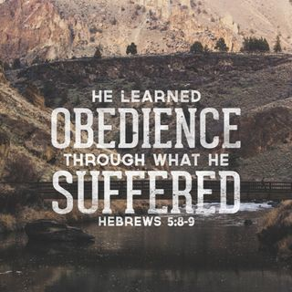Learning Obedience