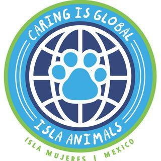 Isla Animals Needs Your Help!