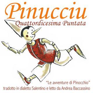 Pinucciu Quattordicesima Puntata