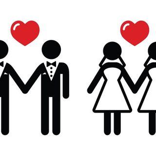 LVNR_Homosexualidad y matrimonio
