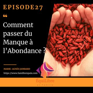 Episode 27 - Comment passer du Manque à l'Abondance ?