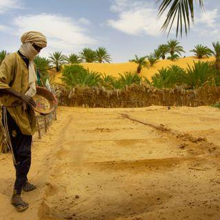 Jihad del Maghreb attorno al lago Ciad