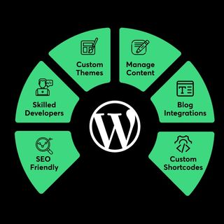 Why Should You Use WordPress for Your CMS Website Benefits and Plugin Availability