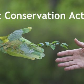 Forest Conservation Act 1980 | UPSC CSE