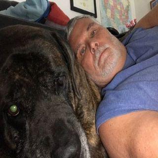 Luna - My Friend, My Pet, My Buddy, My Dog