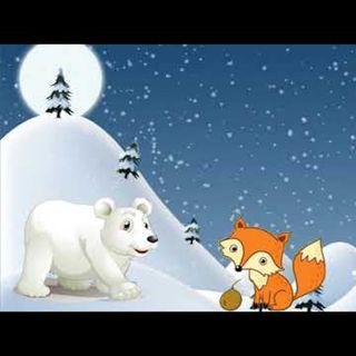 ¿Por qué los osos polares tienen la cola corta?