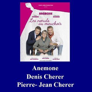 Anémone, Denis Cherer et Pierre-Jean Cherer - Entretien Off 2017
