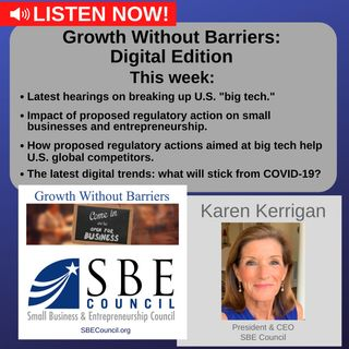 """Growth Without Barriers - DIGITAL EDITION: Hearings in U.S. House on breaking up U.S. """"big tech""""; update on latest digital trends."""