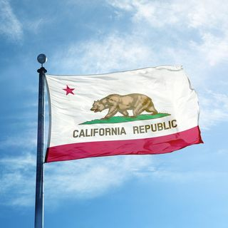 The Insanity Of The State Of California