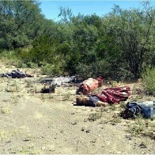 Encuentran cuerpos en baldío de San Luis Potosí