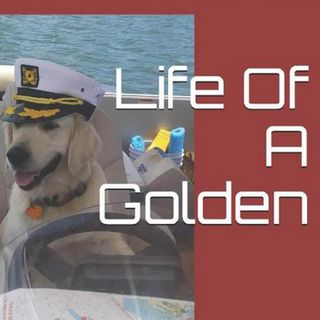 Life Of A Golden, What Lessons do Our Dogs Have to Teach Us, with John Briggle