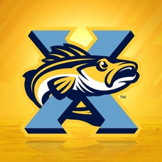 The Toledo Walleye are about to start up their 10th season and Andi Roman gives us all the info