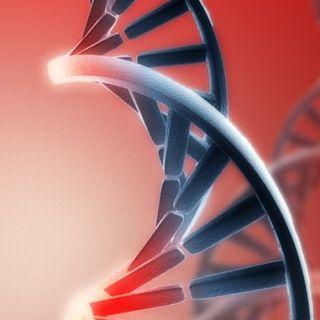 El Genoma del Líder