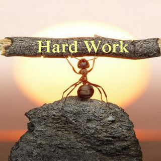 Importance of hardwork