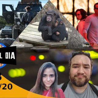 Santuario de Chimpancés | Free Guy | Ponte al día 303 (06/10/20)