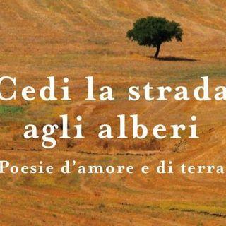LC - La Paesologia - Intervista con Franco Arminio