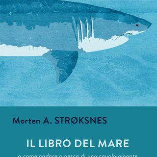 """Francesco Felici """"Il libro del mare"""""""
