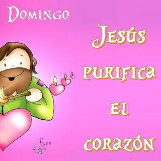 Jesús purifica - Evangelio del 02/09/2018 – Domingo XXII del T. Ordinario – Mc. 7,1-8.14-15.21-23