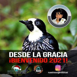 NUESTRO OXÍGENO Desde la gracia bienvenido 2021 - Blanca Inés Gómez