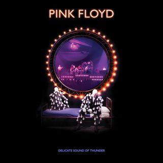 ESPECIAL PINK FLOYD DELICATE SOUND OF THUNDER 2019 PT02 #PinkFloyd #stayhome #wearamask #animaniacs #dot #wakko #yakko #supernatural #crash4