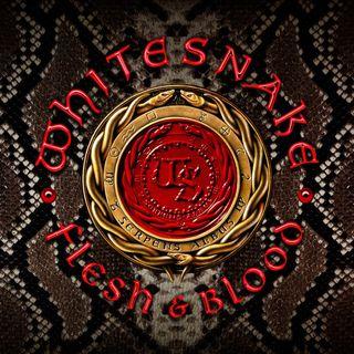 Metal Hammer of Doom: Whitesnake - Flesh & Blood