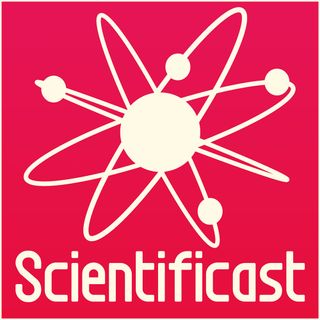 Un grillo nel piatto - Scientificast #173