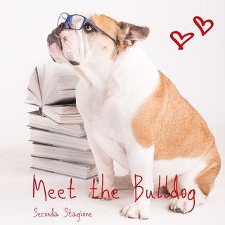 MTB2_02 adottare un bulldog inglese