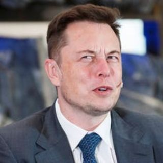 Elon Musk and the Brain Probe