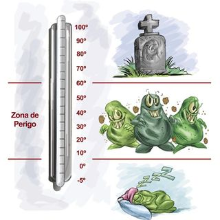 Temperatura de alimentos