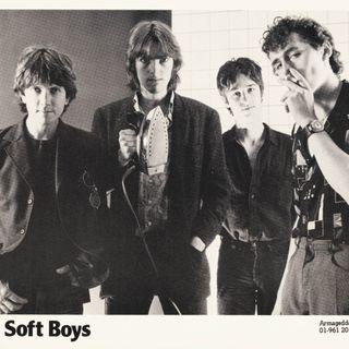 64 - Kimberly Rew of the Soft Boys - Reissues & Katrina & the Waves