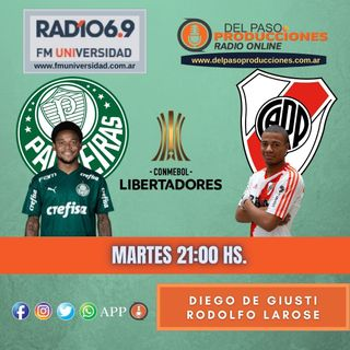 Con mucho esfuerzo, River ganó pero no le alcanzó para ser finalista de la Copa Libertadores