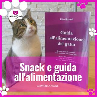Snack per gatti e Guida all'alimentazione del gatto!